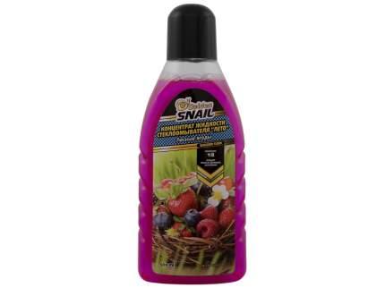 Жидкость для стекол (конценрат летний 1:8) ( Лесные ягоды) 500 мл GS 4106