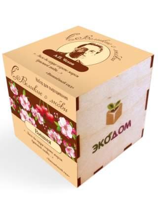 """Подарочный набор для выращивания в кубике (8х8 см) Великие о любви """"Вишня"""" (Чехов А.П.)"""