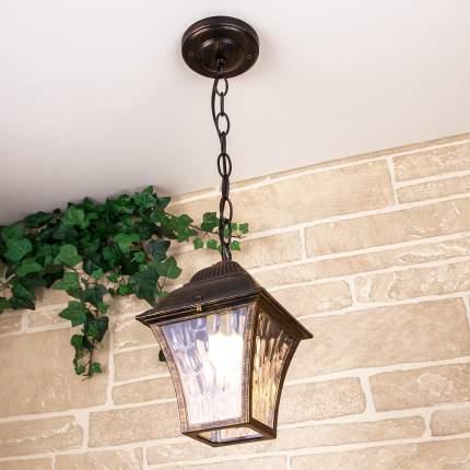 Apus H черное золото уличный подвесной светильник IP33 Elektrostandard GL 1009H