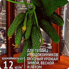 Семена Огурец Домашнее чудо F1, 7 шт, Сибирский сад