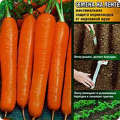 Семена Морковь Нантская Улучшенная Сахарная (на ленте), 8 м, АЭЛИТА