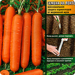 Семена Морковь Сластена (на ленте), 8 м, АЭЛИТА