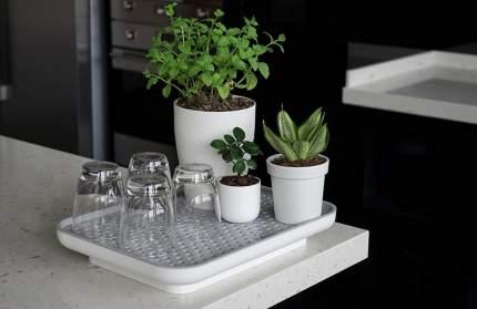 Лоток для полива растений Oasis Tray белый