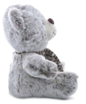 Мягкая игрушка Мишка с шарфиком CoolToys IM1639-20BROWN