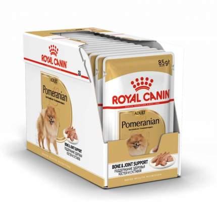 Влажный корм для кошек ROYAL CANIN Pomeranian Adult, мясо, 12шт, 85г