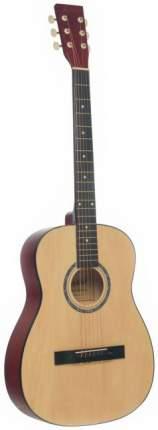 Акустическая гитара TERRIS TF-380A NA