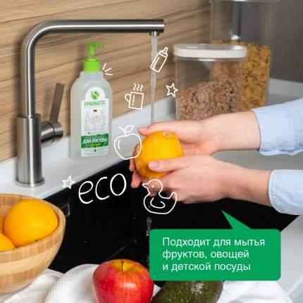 Средство для посуды, овощей и фруктов SYNERGETIC «Алоэ вера» антибактериальное, 0,5л