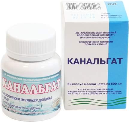 Канальгат Архангельские водоросли капсулы 60 шт.
