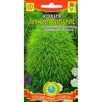 Семена Кохия Летний кипарис, 0,3 г Плазмас
