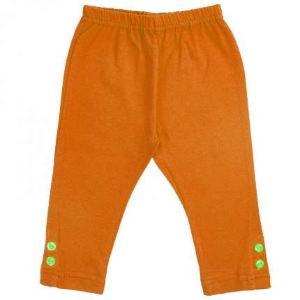 Леггинсы детские Юлла, цв. оранжевый р. 104