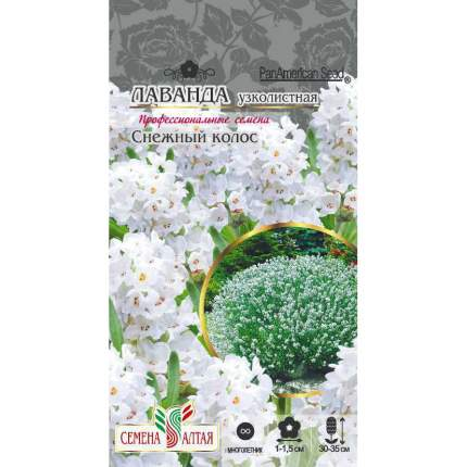 Семена Лаванда узколистная Снежный колос, 5 шт, PanAmerican Seeds семена Семена Алтая
