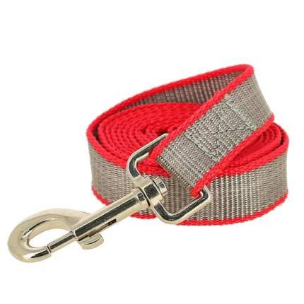 Поводок универсальный для собак Каскад, капрон, красный, длина 2 м х 15 мм