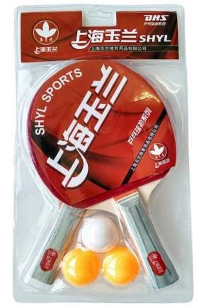 T07549 Набор для настольного тенниса (2 ракетки 3 шарика)