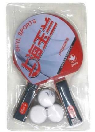 H10106 Набор для настольного тенниса (2ракетки, 3 шарика)