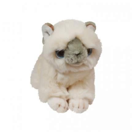 Мягкая игрушка Keel toys Signature котенок белый, 30 см
