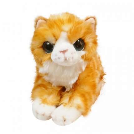 Мягкая игрушка Keel toys Signature котенок рыжий, 30 см