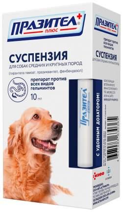 Антигельминтик Празител плюс суспензия для собак средних и крупных пород, 10 мл