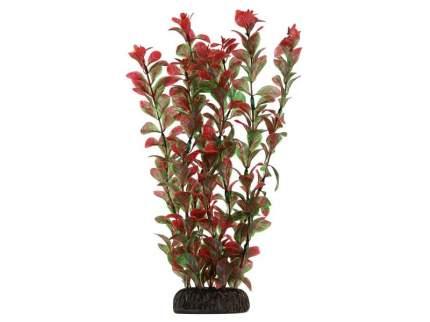 """Растение 2952 """"Людвигия"""" красная, 300мм"""