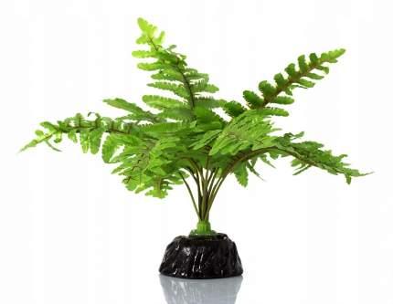 REPTI PLANET Папоротник растение Нефролепис, 20см