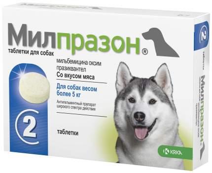 Антигельминтик Милпразон для собак более 5 кг, таблетки 12,5 мг/125 мг 2 таб