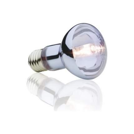 Галогенная лампа для террариума Exo Terra Sun Glo Daylight, 100 Вт