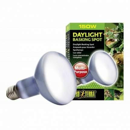 Неодимовая лампа для террариума Exo Terra Sun Glo Daylight, дневного света, R20, 150 Вт