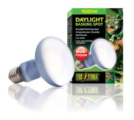 Неодимовая лампа для террариума Exo Terra Sun Glo Daylight, дневного света, R20, 100 Вт