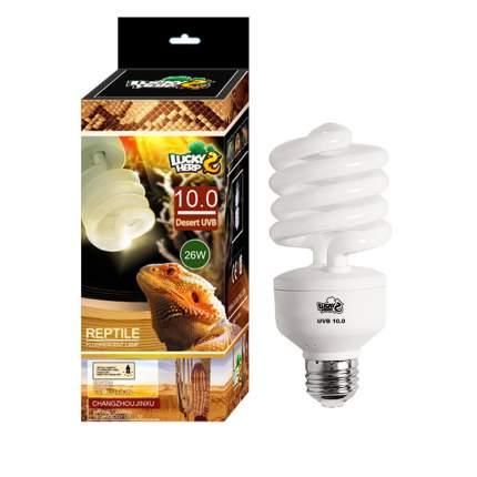 Люминесцентная лампа для террариума Lucky Herp Reptile UVB 10.0 Desert Compact, 13 Вт