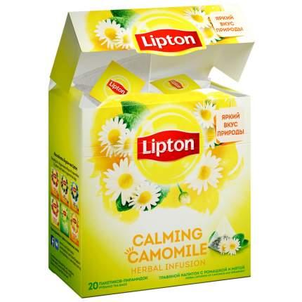 Чай Lipton Calming Camomile травяной  с ромашкой и мятой 20 пак