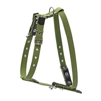 Шлейка для собак Collar брезентовая, зеленая, 20 мм, шея 36-56см, грудь 55-65см