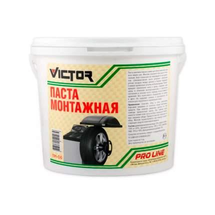Паста Victor ПМ-06 шиномонтажная 5 кг