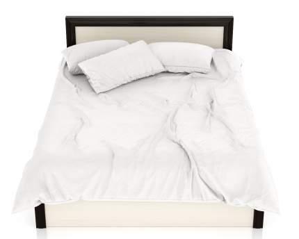 Полутороспальная кровать Мебельный Двор Аврора 1400 дуб/венге, 160х206х80 см