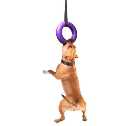 Тренировочный снаряд для собак средних и крупных пород PULLER Maxi, фиолетовый, 30 см