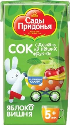 Сок Сады Придонья Яблоко и вишня с 5 мес 125 мл