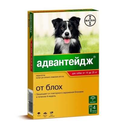 Капли для собак против блох, власоедов, вшей Bayer от 10 до 25 кг, 4 пипеток, 1 мл