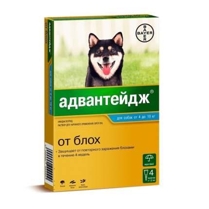 Капли для собак против блох, вшей, власоедов Bayer от 4 до 10 кг, 4 пипеток, 1 мл