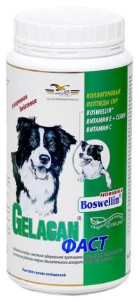 GELACAN Фаст противовоспалительный для собак 500 г