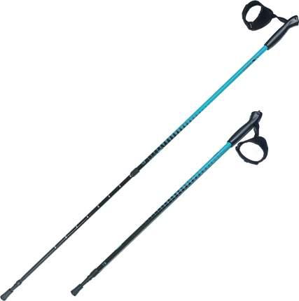 Палки для скандинавской ходьбы RGX NWS-101, голубой/черный, 85-135 см