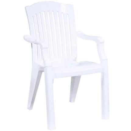 Стул для дачи Стандарт Пластик Премиум 1 СТПЛГР.79250 white 56х45х90 см