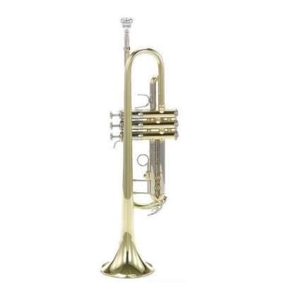 Тромбон-альт Bach At-501