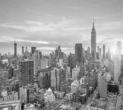 "Фотообои Divino Decor ""Нью-Йорк Сити 300х270"""