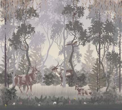 Фотообои Divino Decor Загадочный лес 300х270