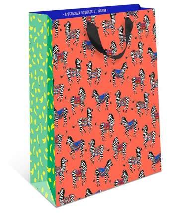 Пакет подарочный Арт и Дизайн