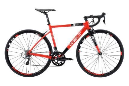 Welt Велосипед Шоссейные R80, год 2021  , ростовка 20, цвет Красный, Черный