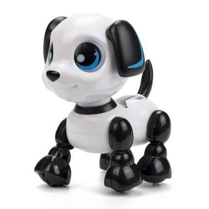 Интерактивный робот Silverlit Хедзап 88524