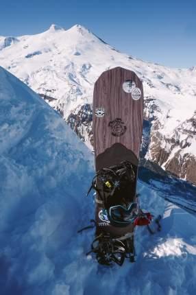 Сноуборд Bear Powder Surfs Кедровка 2020, blue/brown, 146 см