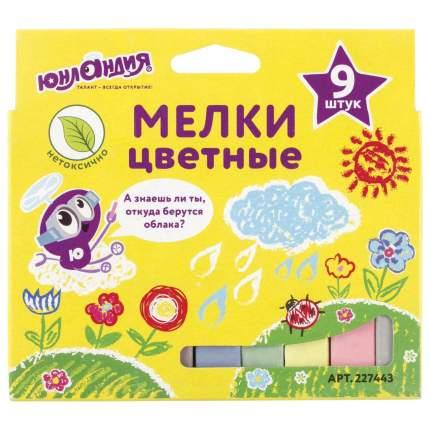 Мел цветной ЮНЛАНДИК И КОСМОС, НАБОР 9 шт, для рисования на асфальте 227443