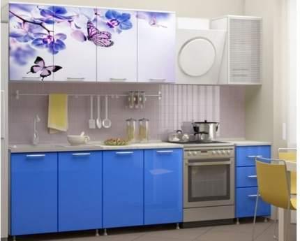 Миф Кухня ЛДСП Фортуна с фотопечатью Бабочки 2000, синяя