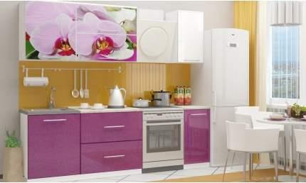 Миф Кухня МДФ с фотопечатью Орхидея 2 1800