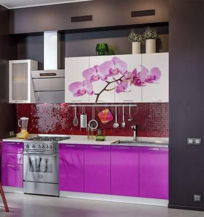 Миф Кухня МДФ с фотопечатью Орхидея 2000